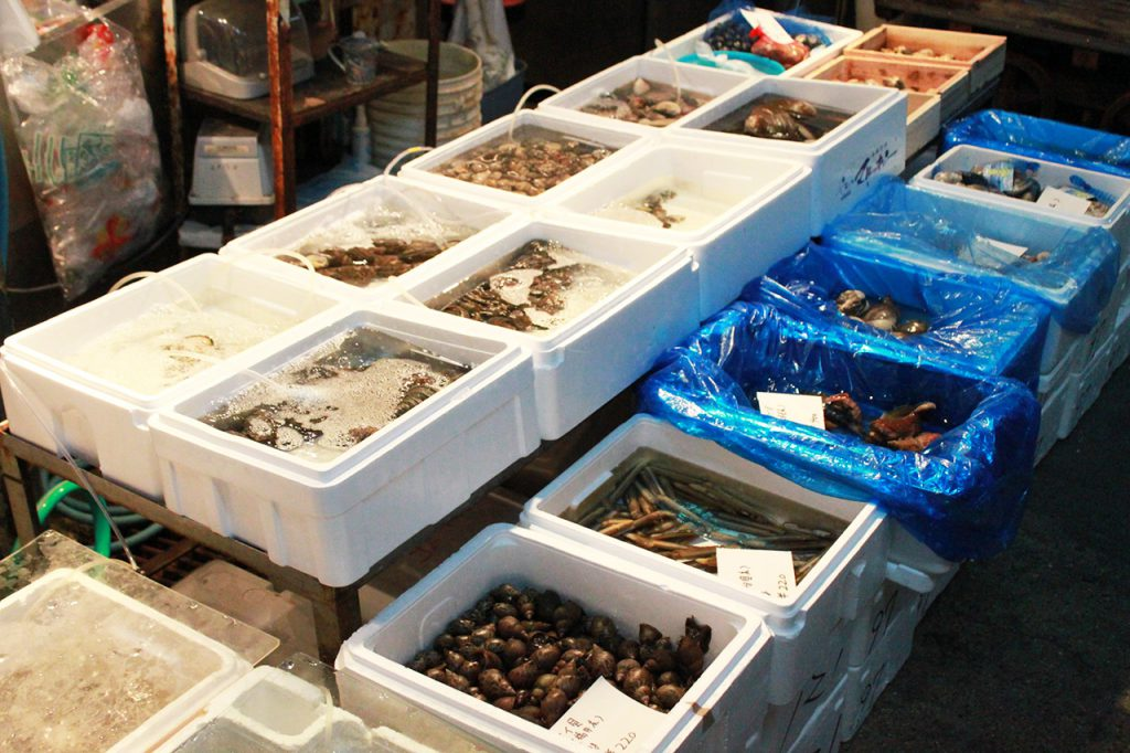 北鶴橋エリア:鶴橋鮮魚市場